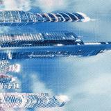 la dispersion de 100%Polyester Dubaï 3D a estampé le tissu pour le jeu de literie