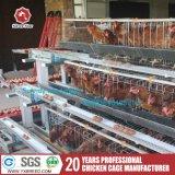 Cages neuves de fermes avicoles de modèle avec des câbles d'alimentation et des buveurs de volaille