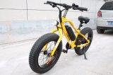 Neues heißes 2018 fette Gummireifen-elektrisches Fahrrad