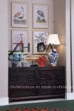 Amerikanische moderne Hauptwohnzimmer-Möbel