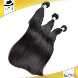 Естественные прямые волосы Remy бразильского 10A в 2016