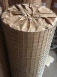 Hot Rolled Multifunctional solvently Steel Non Galvanized Welded Wire Mesh