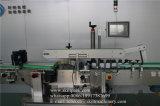 الصين صاحب مصنع لاصق جديدة آليّة [لبل مشن]