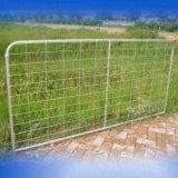 가장자리 가을 보호 강철 메시 방벽 담
