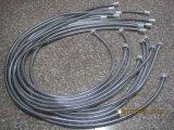 Flexible de douche extensible en acier inoxydable, EPDM, l'écrou en laiton, finition chromée, certificat de l'ACS