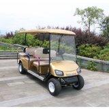 Классический дизайн поле для гольфа с 2 задней поворотной флоп сиденья