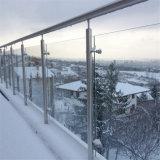 Disegno di vetro esterno dell'inferriata dell'acciaio inossidabile del balcone