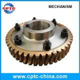 La maquinaria del gusano de acero de alta precisión y rueda helicoidal