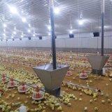 自動繁殖システムが付いている家禽の家の肉焼き器装置