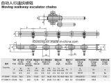 China el rodillo de la escalera mecánica de la cadena de paso