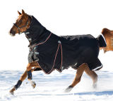 Coperta di cavallo combinata del nuovo coperchio impermeabile del collo di inverno (SMR1701)