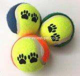 Sfera di tennis poco costosa del cane di giocattolo dell'animale domestico