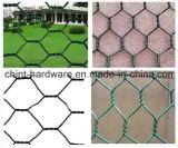 高品質六角形ワイヤー網および六角形の金網