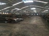 La Cina ha fatto l'Africa introdurre la pelle sul mercato d'acciaio esterna del portello del grano di legno con il buon prezzo