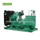 Cummins 50kw Diesel Power Generator for Salts with OEM Certificate