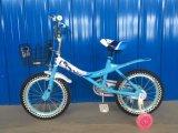 أطفال درّاجة [د75]