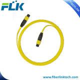 光ファイバMTP/MPOトランクケーブルOm3 Om4 12のコアパッチ・コード