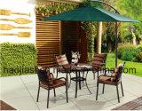 Im Freien/Rattan/Garten/Patio-/Hotel-Möbel-Gussaluminium-Stuhl u. Tisch stellte ein (HS3003C u. HS 6117DT)