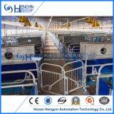 Altos embalajes de parto galvanizados Strengh del cerdo para la granja de cerdo
