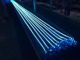 Indicatore luminoso di striscia di SMD 5050 24W 24V IP20 4000K LED