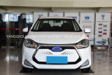 Automobile elettrica ad alta velocità di vendita calda 2017 con 5 sedi