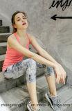 Usura a due pezzi di yoga degli abiti sportivi dei nuovi della donna della maglia della stampa pantaloni della plastica
