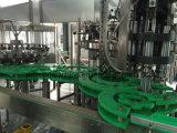 Glasflaschen-Saft-Tee trinkt Füllmaschine/Produktionszweig Pflanze