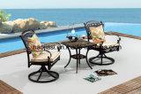 Tableau en aluminium HS7060et extérieur/de jardin/patio rotin