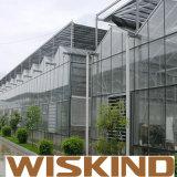 Tettoia industriale prefabbricata del gruppo di lavoro d'acciaio di Wiskind