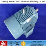 Motore elettrico a tre fasi delle coperture di alluminio