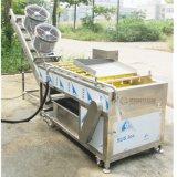 Rondelle de fruit d'automatisation et chaîne de production de séchage de lavage végétale de dessiccateur