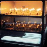 IEC60598 Lien électronique de la lampe en acier inoxydable de la lumière de la vie de la machine de test