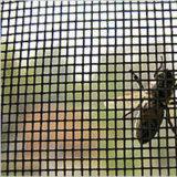 Het Scherm van het Venster van de glasvezel, het Scherm van het Insect van de Glasvezel in China wordt gemaakt dat