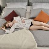 現代デザインベッド洗濯できるファブリックカバー家具G7001