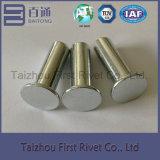 10X30mm weiße Zink-Farben-flacher fester Stahlhauptniet