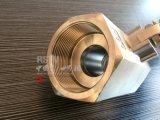 Wcb 탄소 강철 수동 1PC 6각형 스레드 공 벨브