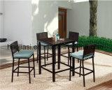옥외 /Rattan/정원/안뜰/호텔 가구 차리는 플라스틱 목제 바 Chair& 바 테이블 (HS 3001SC & HS 7108ADT)