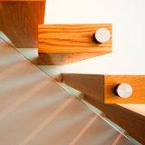 بطل فولاذ حديثة بسيطة يعوم درج خشبيّة