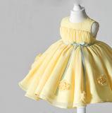 Gelbe Organza-Blumen-Mädchen-Kleider
