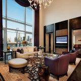 Muebles agradables de la silla del sofá del hotel del diseño de la manera