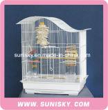 振屋根のオウムおよびカナリアのための一義的な金網の鳥籠