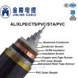 Câbles d'alimentation 6/10kv Mv câbles simple coeur à la norme CEI 60502 -2