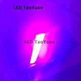 Cura UV da tinta da lâmpada 200W 395nm do diodo emissor de luz