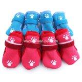 安定した品質犬はペット子犬の靴に蹄鉄を打つ