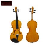 Niedrige Preis-beste Marken der bunten Violinen hergestellt in China
