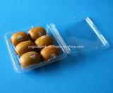 коробка квадратного ясного плодоовощ Clasmshell волдыря 500g пластичного упаковывая
