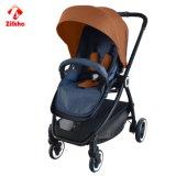 I passeggiatori del bambino possono mettere la commutazione a sedere
