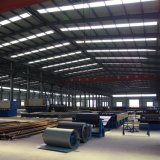 가벼운 유형 산업 건축 디자인 아치 강철 건물