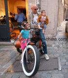 250With500With750W Sidecar de Vette Fiets van Pedelec/Sidecar E/Zij Elektrische Sidecar E van de Levering van de Jonge geitjes van de Fiets Fiets/het Zij trike/E-ZijZijspan van het Vervoer van de Fiets Eletric/van de Baby