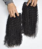 자연적인 까만 색깔 Virgin 머리 연장에서 9A 페루 비꼬인 꼬부라진, 100% 사람의 모발